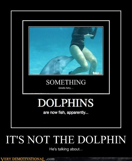 IT'S NOT THE DOLPHIN He's talking about...