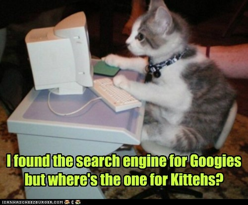 internet computer kitty dogs funny - 6953643264