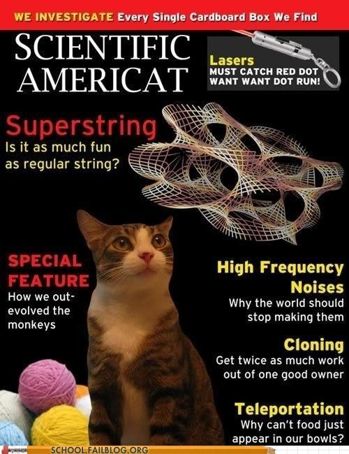 cat,scientific american,magazine,School of FAIL