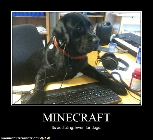 MINECRAFT Its addicting. Even for dogs.