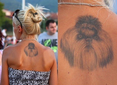 dogs,back tattoos