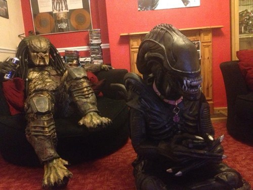 Aliens gaming chillin Predator alien vs predator