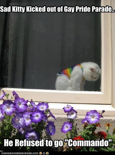 "Sad Kitty Kicked out of Gay Pride Parade.. He Refused to go ""Commando"""