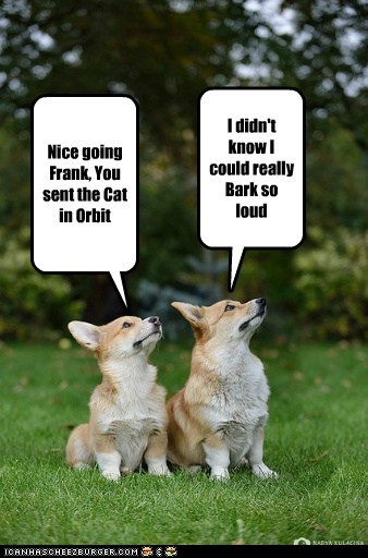 Nice going Frank, You sent the Cat in Orbit I didn't know I could really Bark so loud