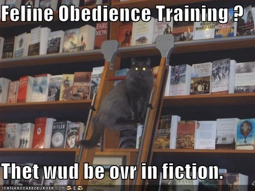 books,FAIL,fiction,librarian,lolcats,obedience training,shh