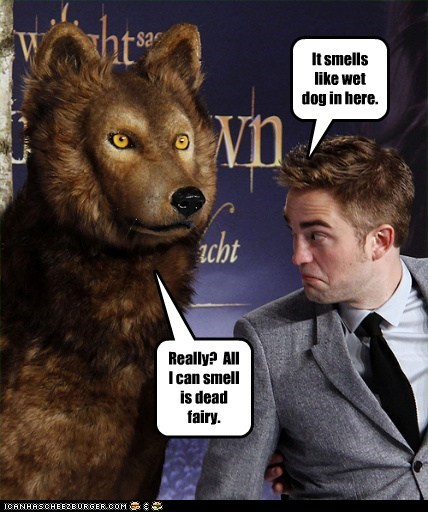 wet dog,smell,robert pattinson,dead,twilight,fairy,breaking dawn part 2