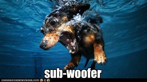 gggggggg sub-woofer