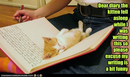 Dear diary the kitten fell asleep while I was writing this so please excuse my writing is a bit funny