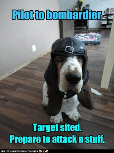 costume dogs basset hound bomber pilot Target hat - 6958213632