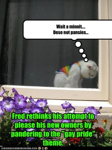 "Wait a minnit.... Dese not pansies... Fred rethinks his attempt to please his new owners by pandering to the ""gay pride"" theme."