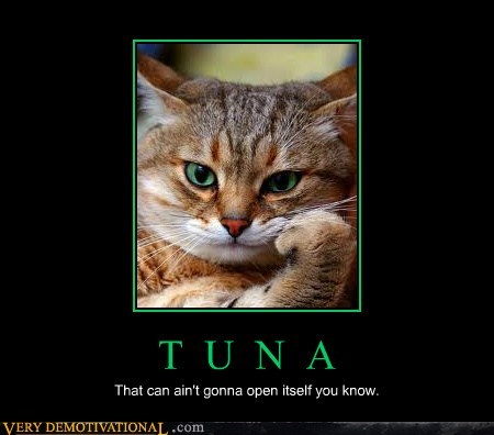 cat tuna angry - 6958547200