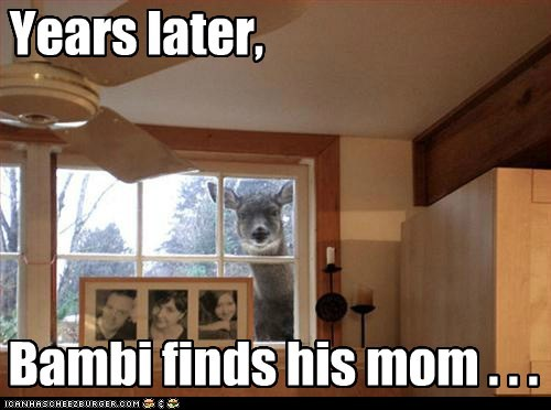 Years later, Bambi finds his mom . . .