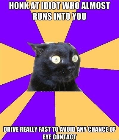 Anxiety Cat,Memes,image macro