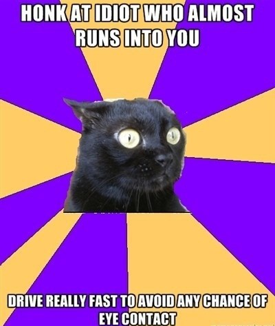 Anxiety Cat Memes image macro - 6958890240