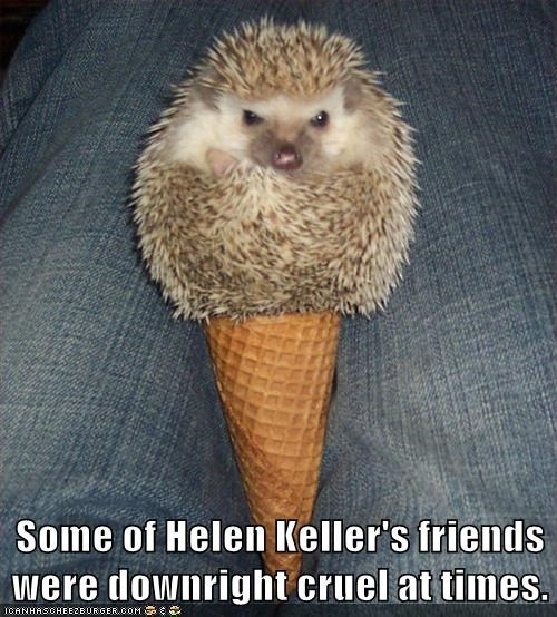helen keller,tricks,hedgehogs,pranks,cruel,ice cream cone