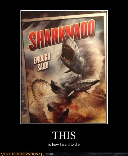 tornado,enough said,shark