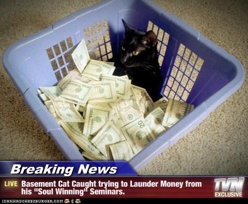 Image result for cat winning money