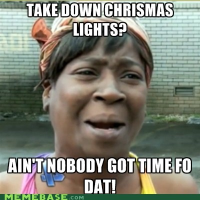 aint-nobody-got-time christmas lights - 6960974592