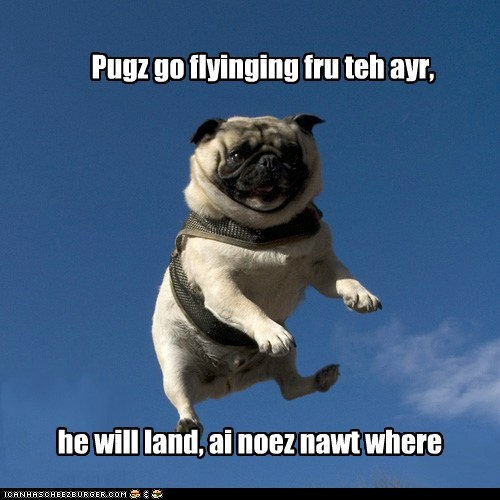 Pugz go flyinging fru teh ayr, he will land, ai noez nawt where