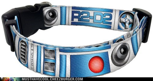 r2d2 dog collars star wars droids