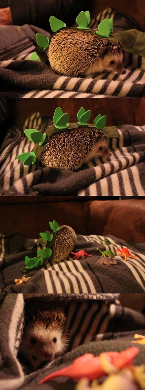costume,stegasaurus,dinosaur,spines,hedgehog,squee
