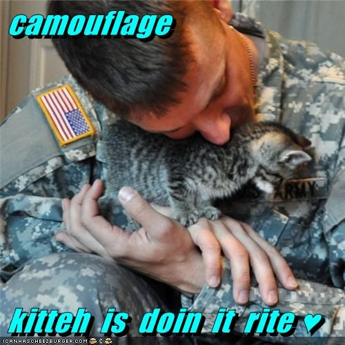 Cheezburger Image 6961726976