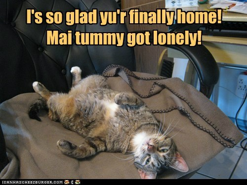 I's so glad yu'r finally home! Mai tummy got lonely!