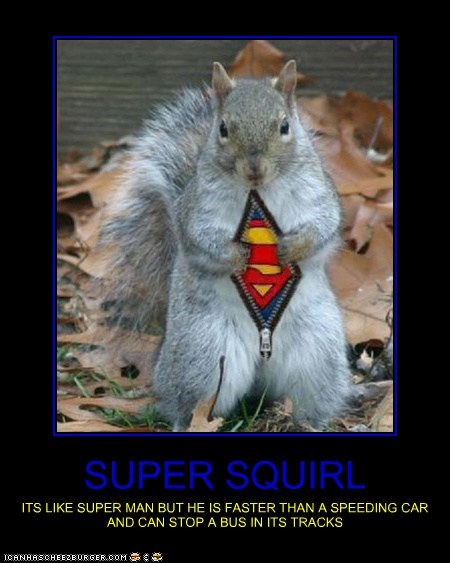 SUPER SQUIRL