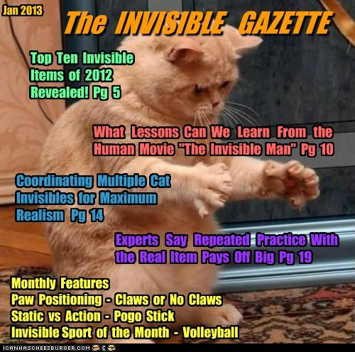 "The INVISIBLE GAZETTE Jan 2013 Monthly Features Paw Positioning - Claws or No Claws Static vs Action - Pogo Stick Invisible Sport of the Month - Volleyball Top Ten Invisible Items of 2012 Revealed! Pg 5 What Lessons Can We Learn From the Human Movie ""The Invisible Man"" Pg 10 Coordinating Multiple Cat Invisibles for Maximum Realism Pg 14 Experts Say Repeated Practice With the Real Item Pays Off Big Pg 19"