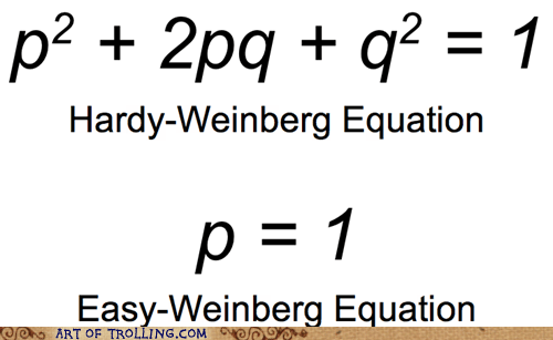 hardy-weinberg equation math - 6963888384