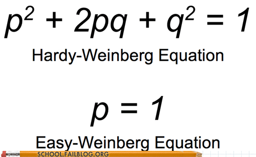 easy hardy-weinberg equation math - 6963888896