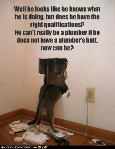 Well he looks like he knows what he is doing, but does he have the right qualifications? He can't really be a plumber if he does not have a plumber's butt, now can he?