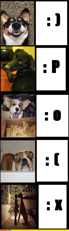 Cheezburger Image 6964617984
