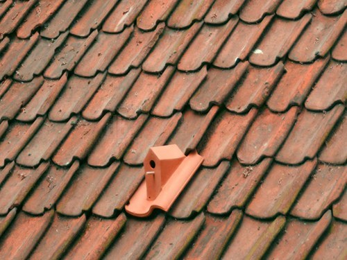 roof bird house tile terra cotta