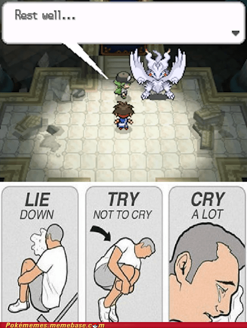 gameplay,tears,N,reshiram