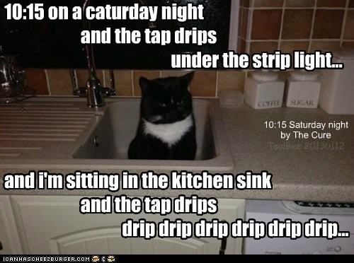 10:15 on a caturday night...