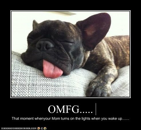 OMFG..... That moment whenyour Mom turns on the lights when you wake up.......