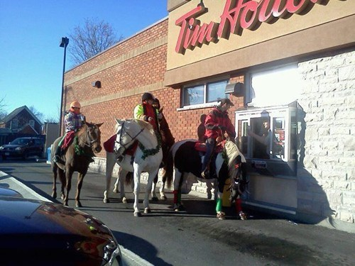 Canada tim hortons horseback riding coffee fail nation g rated - 6965622272