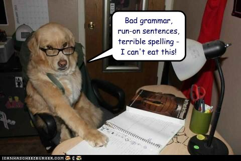 homework,dogs,bad grammar,glasses,dog ate my homework,golden retrievers