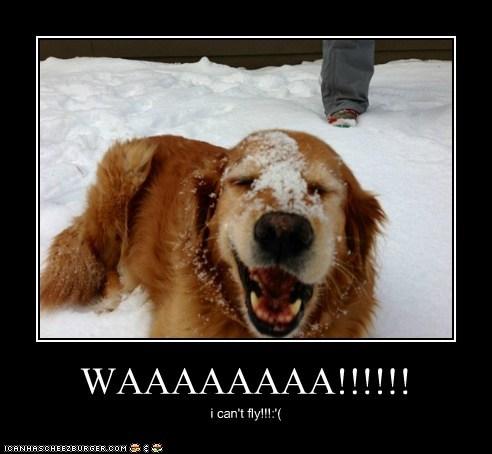 WAAAAAAAA!!!!!! i can't fly!!!:'(