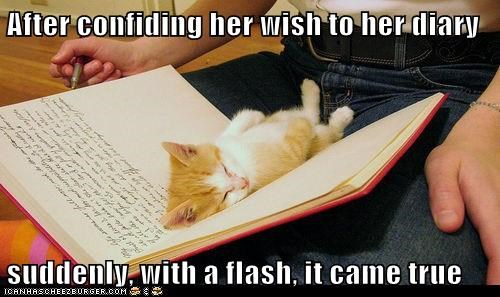 After confiding her wish to her diary suddenly, with a flash, it came true