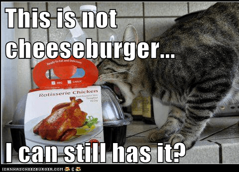 Cheezburger Image 6966514432