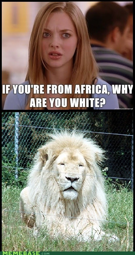 lions white mean girls racist - 6966514944