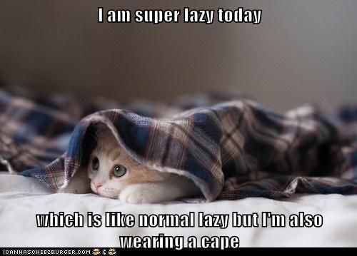 I Ve Always Loved These Lazy Sundays Lolcats Lol Cat Memes