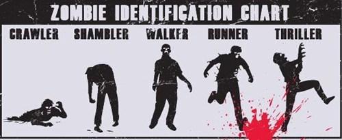 zombie thriller - 6966973440