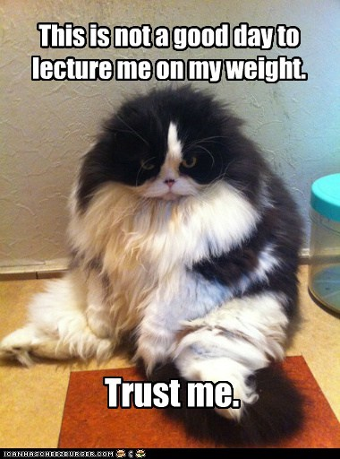 This is not a good day to lecture me on my weight. Trust me.