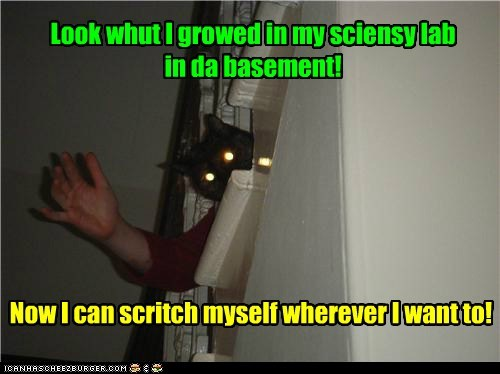 basement cat mutant school science funny - 6967393792