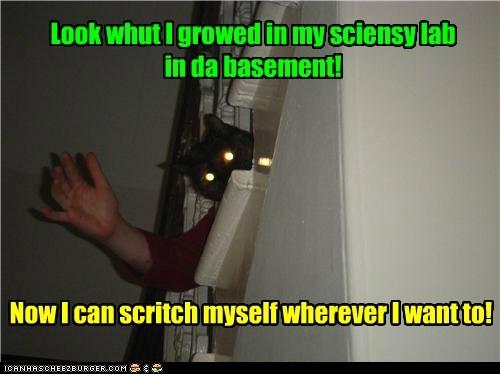 basement cat school science funny - 6967393792
