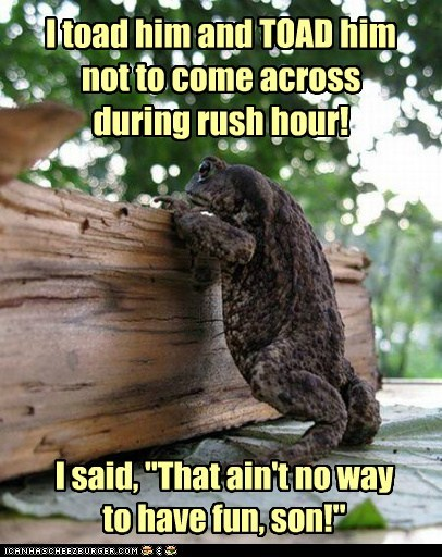 fun toad rush hour puns frogger roads - 6967507456