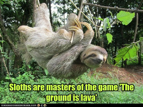 climbing,the floor is lava,sloths,slow,masters